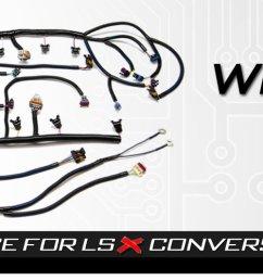 psi standalone wiring harness ls wiring ls wirng harness lsx harness lsx swap harness ls lsx ls1 ls2 ls3 ls7 lsa ls9 lt1  [ 1583 x 500 Pixel ]