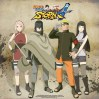 new_off_NarutoStorm4_2