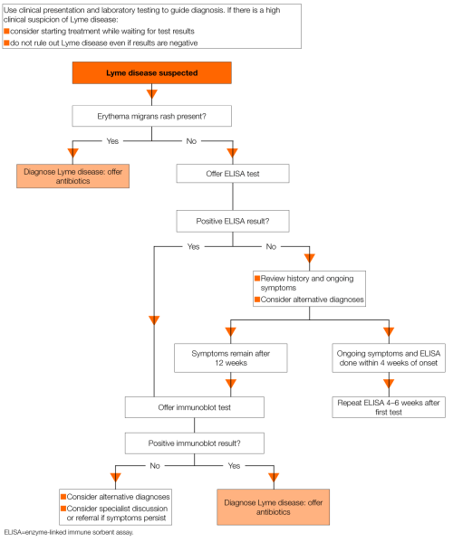 small resolution of lyme disease when to suspect and how to manage implementing guidelines guidelines in practice
