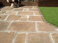 Preloved | How do you fill the cracks between paving slabs ...