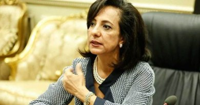 النائبة داليا يوسف، عضو لجنة العلاقات الخارجية