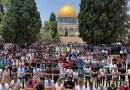 ارتفاع حصيلة ضحايا العدوان الإسرائيلي على غزة إلى 83 شهيدا.. والآلاف يؤدون صلاتي العيد والغائب في الأقصى