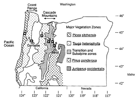 NPP Temperate Forest: OTTER Project Sites, Oregon, U.S.A