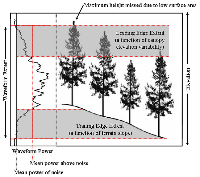 forest canopy diagram ford 5000 ignition switch wiring lidar based biomass estimates boreal biome eurasia 2005 2006 of waveforms and structure