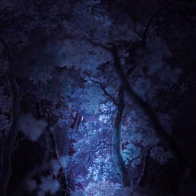 Dennis-Diem-Trouble-in-Paradise-AFW15-visual-backdrop