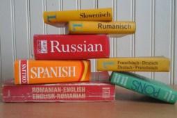 « Pourquoi avons-nous si peur des autres langues ? »