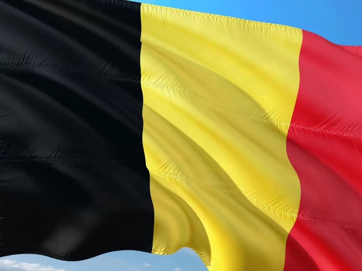 Les Flamands sont de «meilleurs» Belges que les Wallons