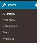 Taxonomies WordPress_Image 4