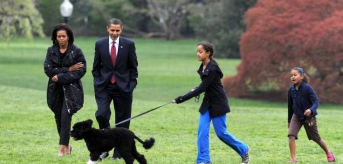"""رحيل أحد نجوم البيت الأبيض بعد صراع مع مرض السرطان.. أوباما ينعى كلبه """"بو"""""""