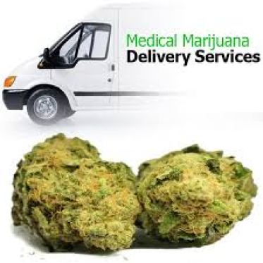 Marijuana Delivery Services