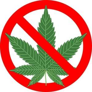 No weed in pro sports