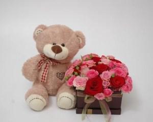 Meškutis su gėlių dėžute