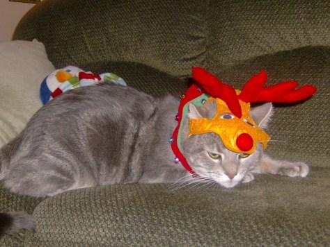 Rudolph was the hap-hap-happiest reindeer.