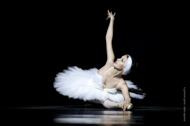 """Teatro Argentino - """"La muerte del Cisne"""" - Elizabeth Antunez"""