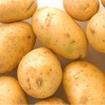 Жёлтый картофель Сударыня