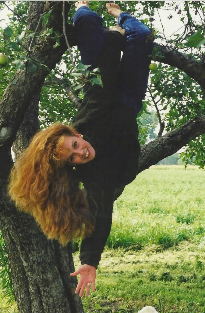 Dachia hanging in tree