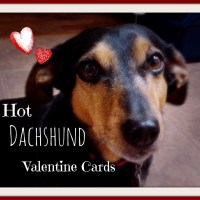Top Dachshund Valentine Day Cards that are Real Wieners