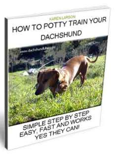 How To Potty Train A Dachshund