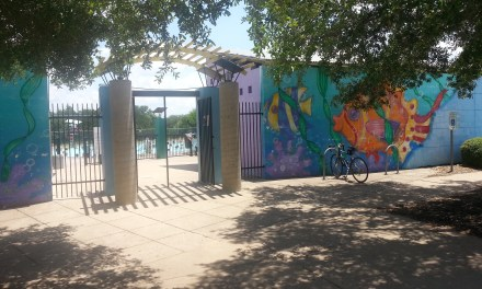 Our Neighborhood Park – Dick Nichols Park (and Pool)