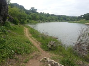 Another view of the Pedernales River
