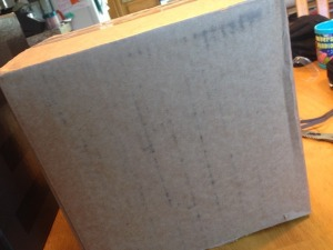 Minecraft Enderman Halloween Costume DIY Mask cardboard box