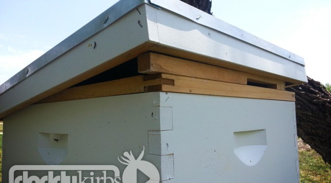 Beekeeping: Stacking Up The Hive