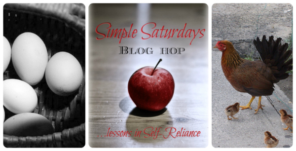 Simple Saturdays Blog Hop #3