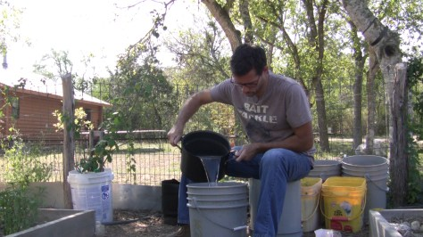 How To Make Compost Seed Starting Soil 04
