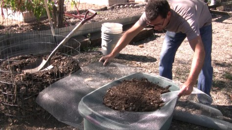 How To Make Compost Seed Starting Soil 09