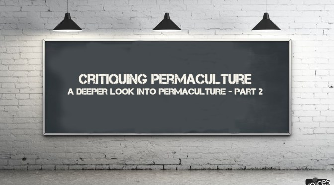 Critiquing Permaculture - My response to a thought provoking podcast.