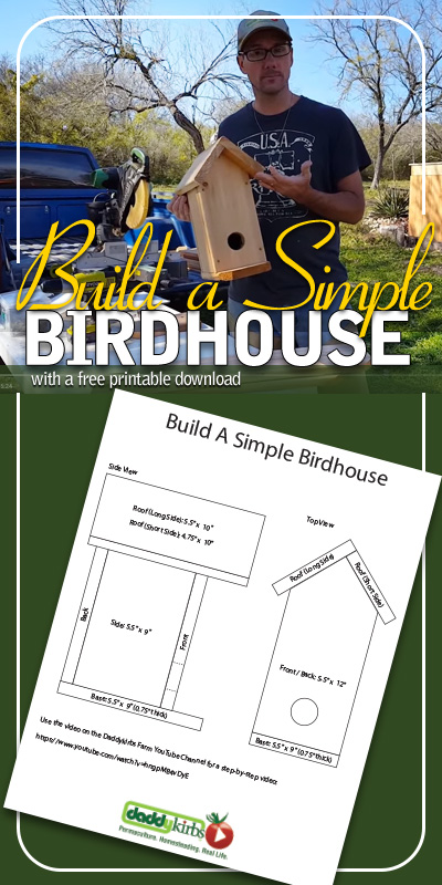Build A Simple Birdhouse: DIY Birdhouse Plans
