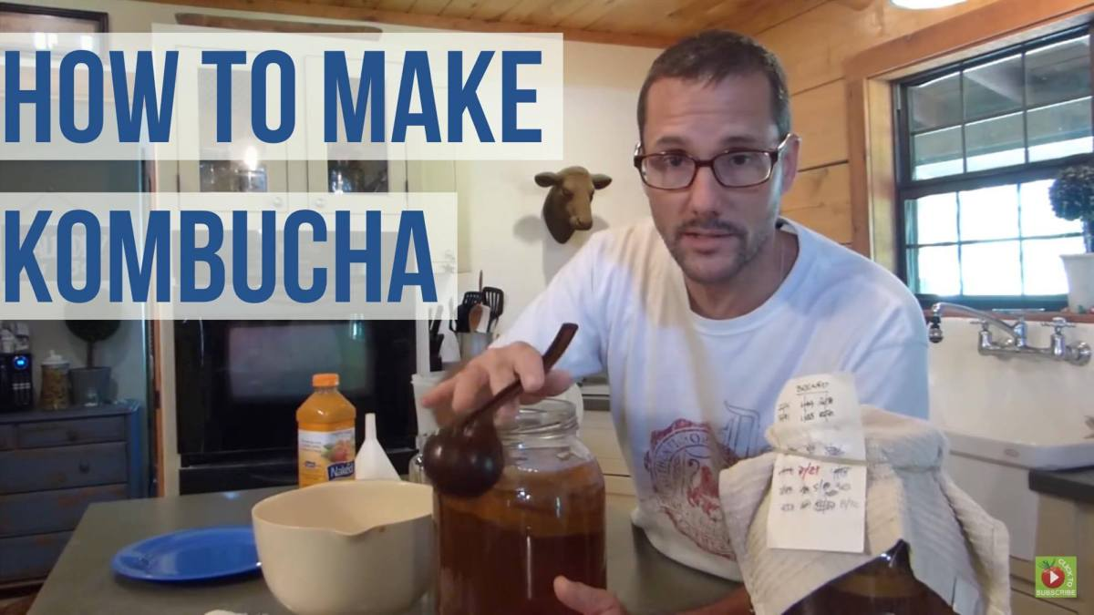Make Kombucha - A How To Guide