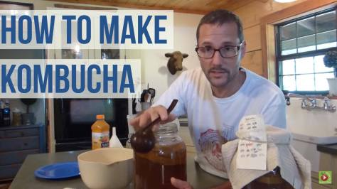 How To Make Kombucha with Daddykirbs!