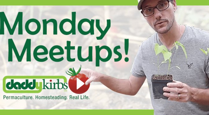 Monday Meetups - Bringing together homesteading and gardening video creators!