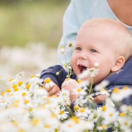 Польза ромашкового чая для детей, поможет ли он отдохнуть малышу?