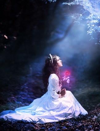 In A Magic Forest