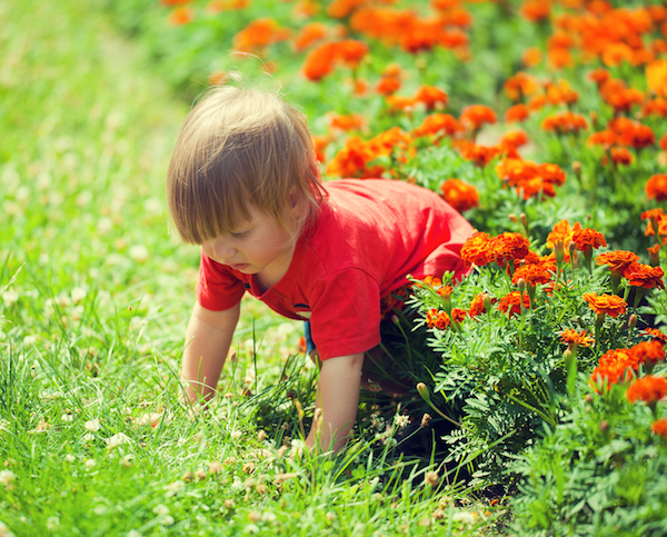 Boy playing in flowers and grass