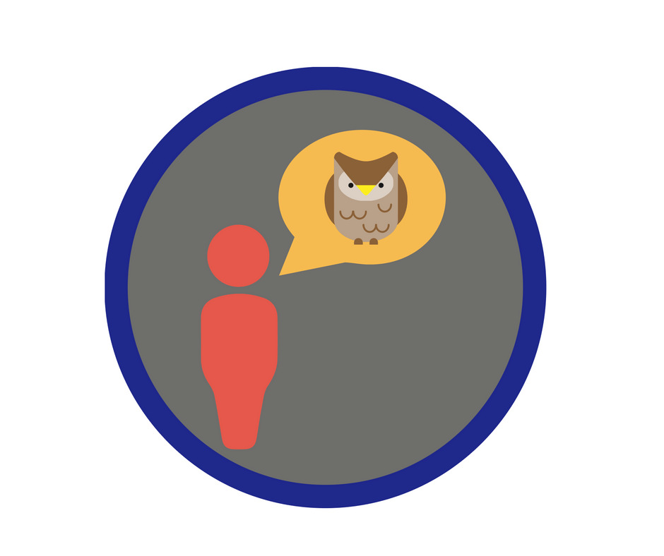 Image of girl guide leader badge for colleagues calling you buy your owl name