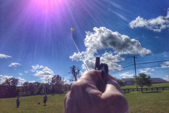 Flying a kite at molasses park