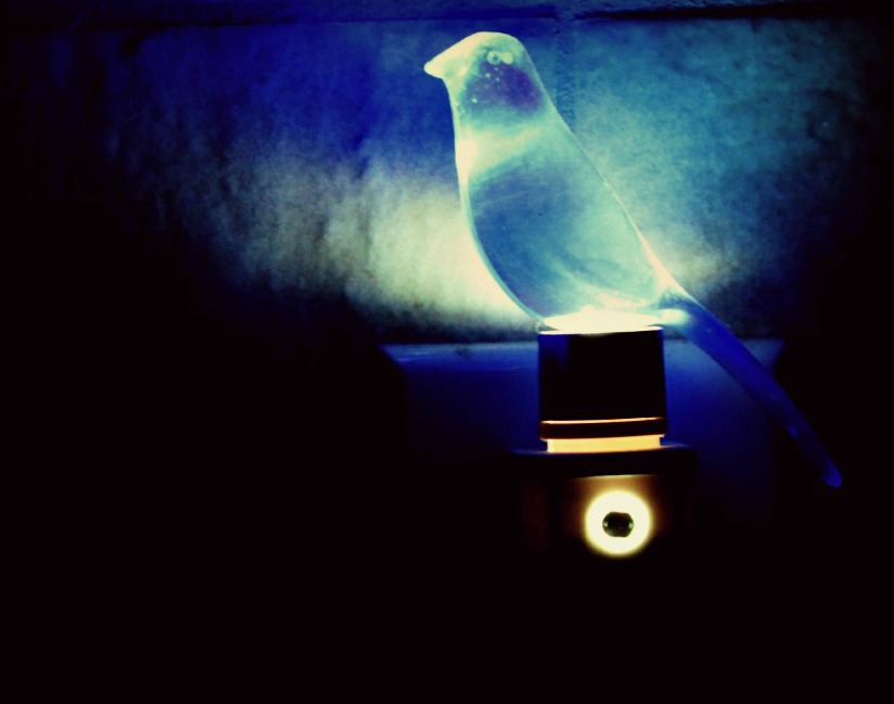 Blue Canary nightlight