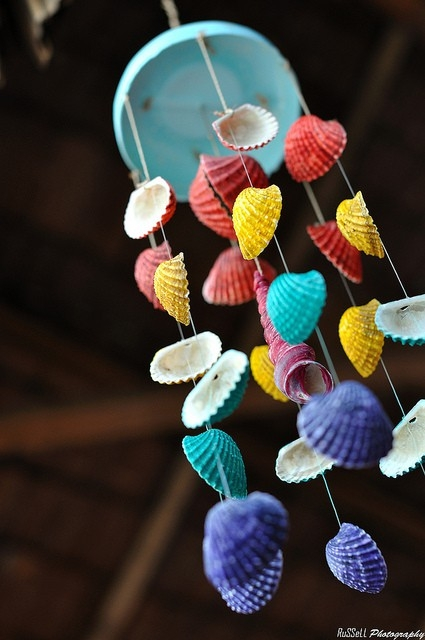 16 Amazing Seashell Craft Ideas For Kids