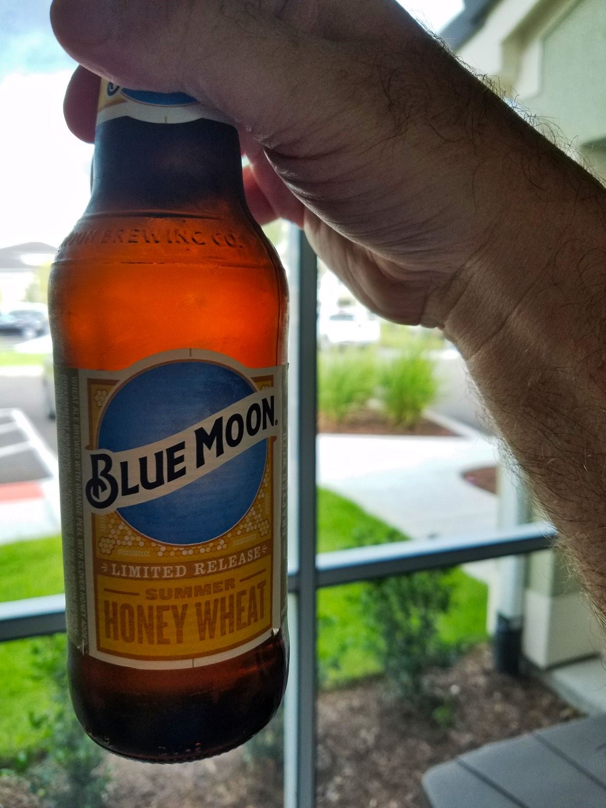 Blue Moon Summer Honey Wheat Beer Review