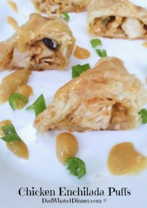 Chicken Enchilada Puffs | http://dadwhats4dinner.com