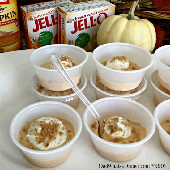 If you love pumpkin pie you are going to love these adult Pumpkin Pie Pudding Shots. Taste just like the pie with a nice little kick.