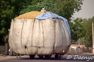Rajasthan Transport Inc.