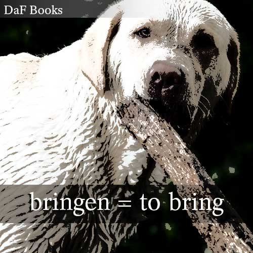bringen - to bring: DaF Books vocabulary list