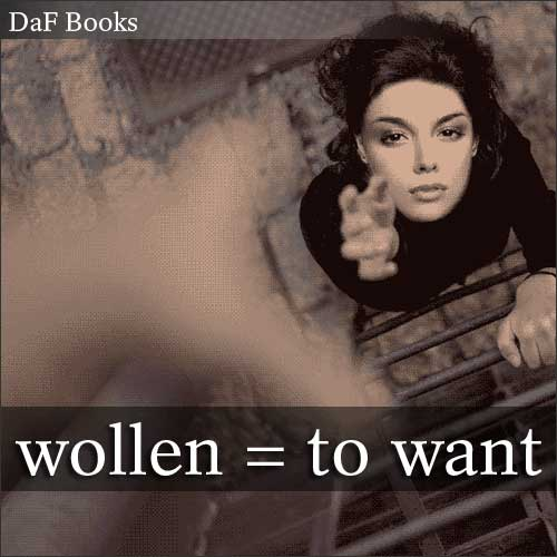 wollen - to want: DaF Books vocabulary list
