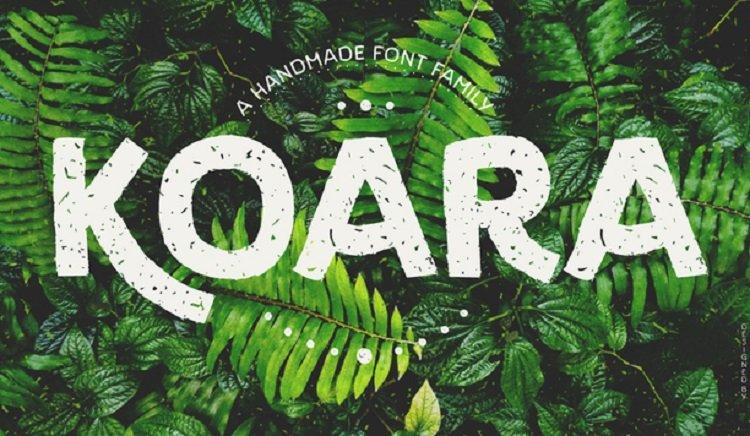 koara-font-family