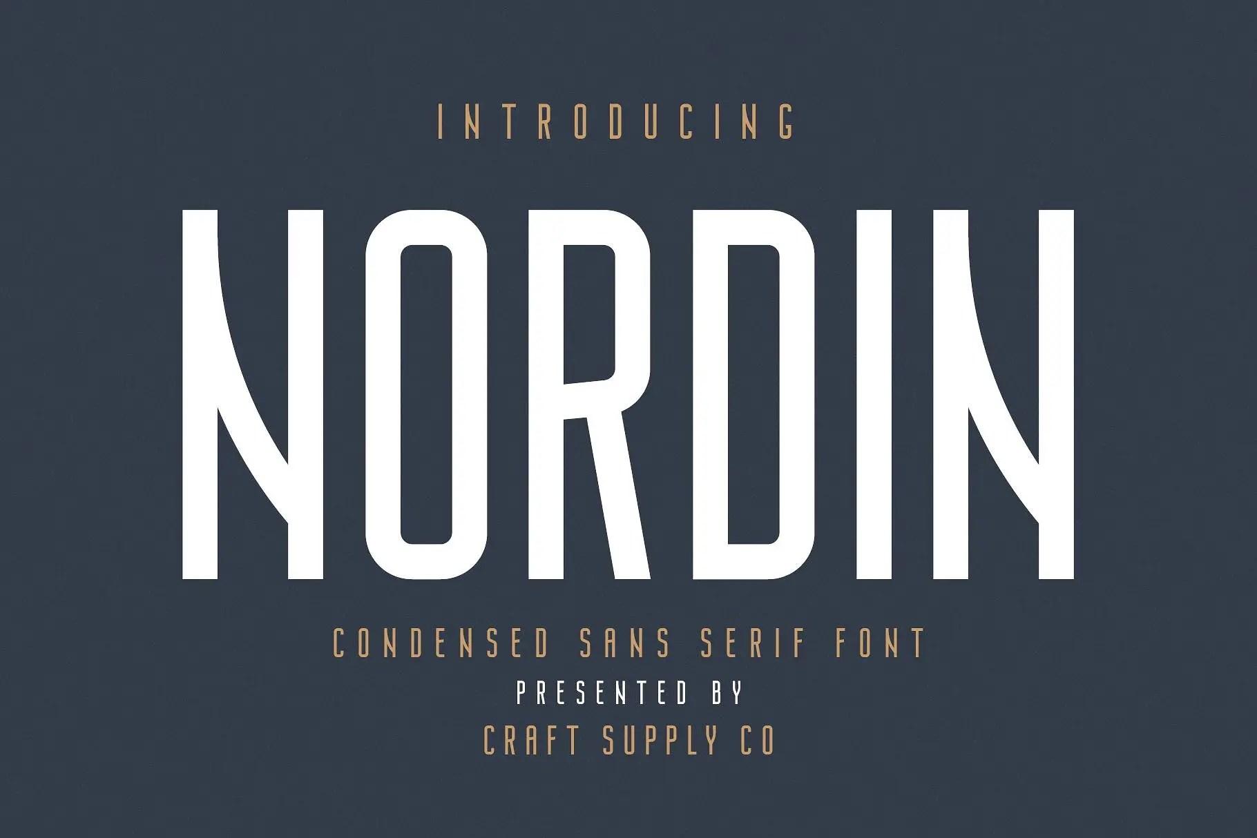 nordin-sans-serif-font