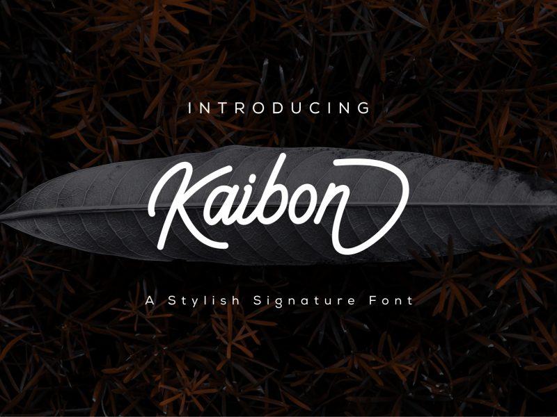 Kaibon-1-800x600